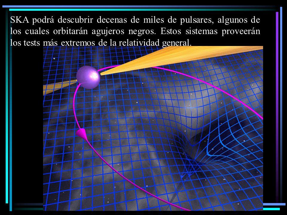 SKA podrá descubrir decenas de miles de pulsares, algunos de los cuales orbitarán agujeros negros.