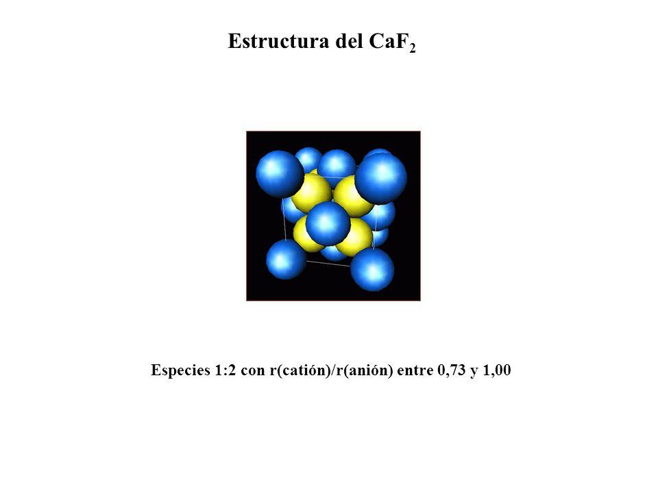 Estructura del CaF2 Especies 1:2 con r(catión)/r(anión) entre 0,73 y 1,00