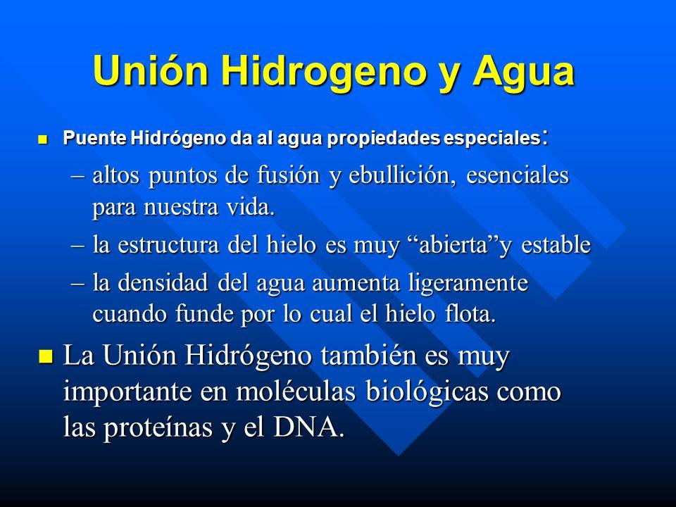 Unión Hidrogeno y Agua Puente Hidrógeno da al agua propiedades especiales: altos puntos de fusión y ebullición, esenciales para nuestra vida.