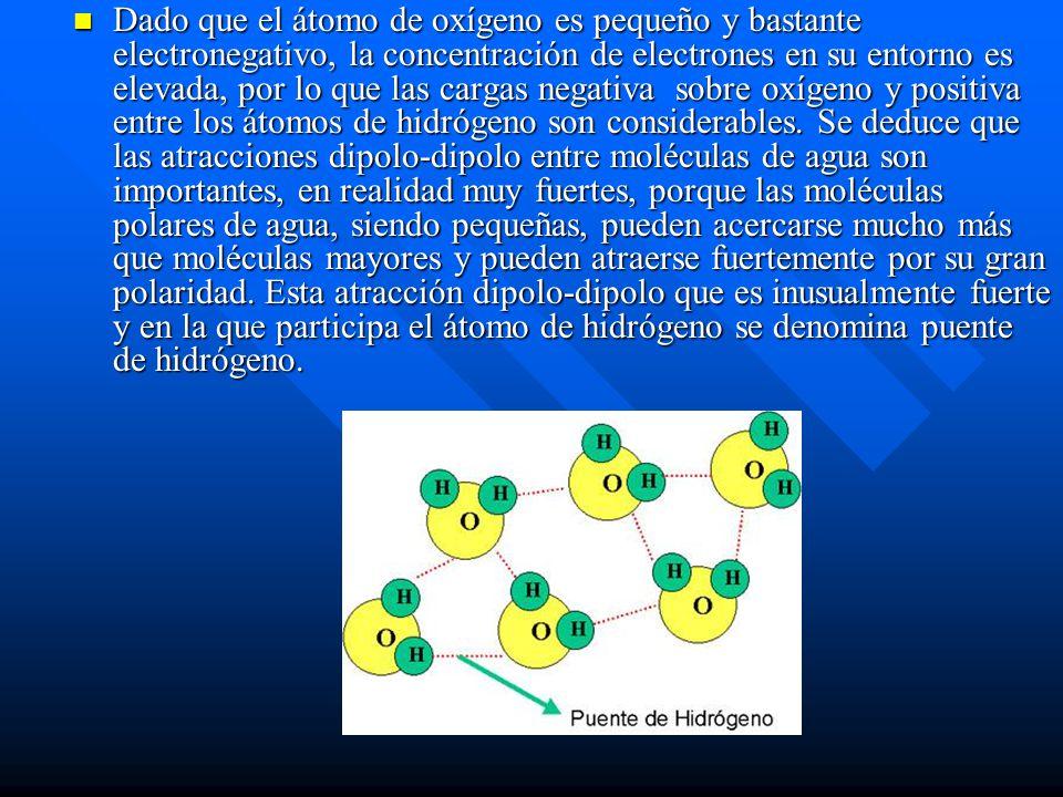Dado que el átomo de oxígeno es pequeño y bastante electronegativo, la concentración de electrones en su entorno es elevada, por lo que las cargas negativa sobre oxígeno y positiva entre los átomos de hidrógeno son considerables.