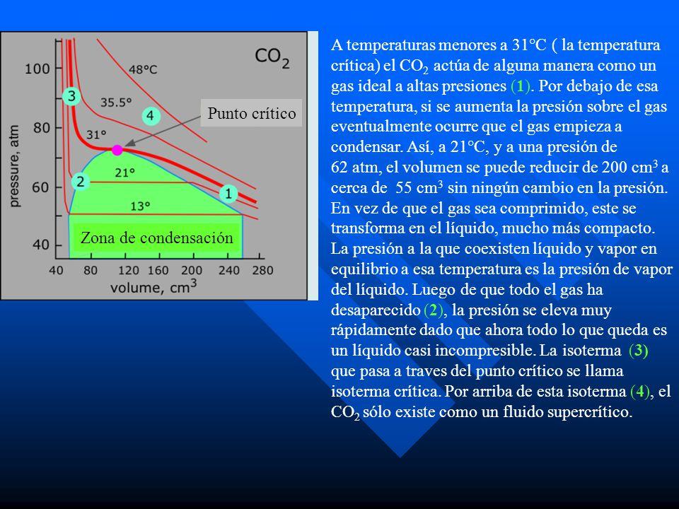 A temperaturas menores a 31°C ( la temperatura crítica) el CO2 actúa de alguna manera como un gas ideal a altas presiones (1). Por debajo de esa temperatura, si se aumenta la presión sobre el gas eventualmente ocurre que el gas empieza a condensar. Así, a 21°C, y a una presión de 62 atm, el volumen se puede reducir de 200 cm3 a cerca de 55 cm3 sin ningún cambio en la presión. En vez de que el gas sea comprimido, este se transforma en el líquido, mucho más compacto. La presión a la que coexisten líquido y vapor en equilibrio a esa temperatura es la presión de vapor del líquido. Luego de que todo el gas ha desaparecido (2), la presión se eleva muy rápidamente dado que ahora todo lo que queda es un líquido casi incompresible. La isoterma (3) que pasa a traves del punto crítico se llama isoterma crítica. Por arriba de esta isoterma (4), el CO2 sólo existe como un fluido supercrítico.