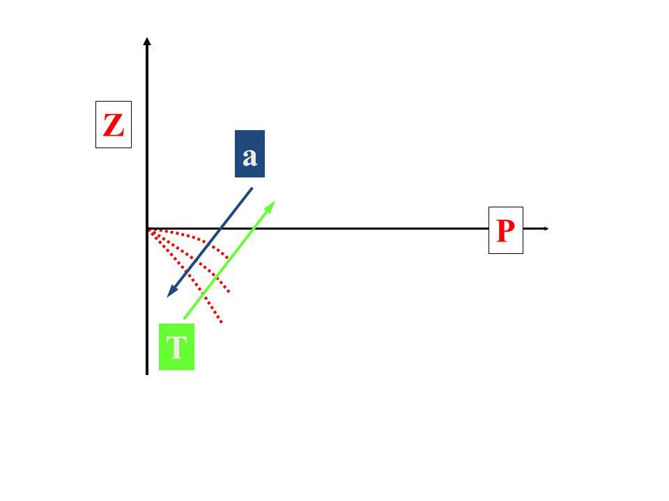 Z P a T