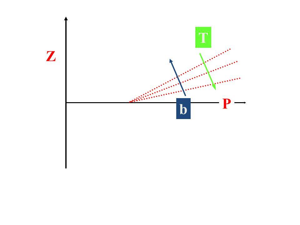 T Z P b