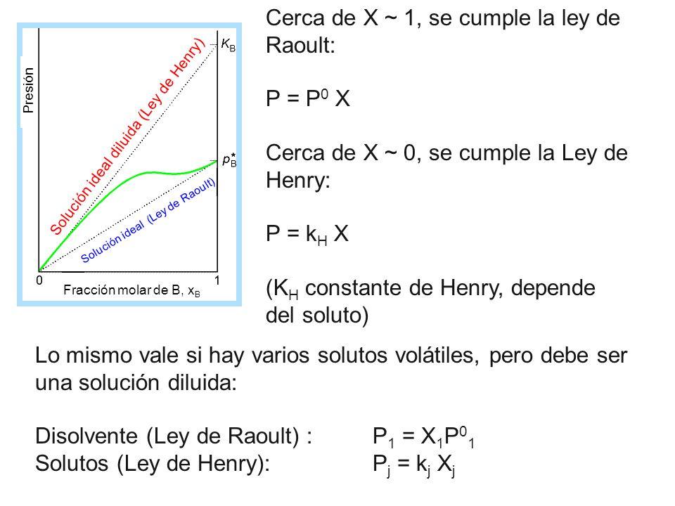 Cerca de X ~ 1, se cumple la ley de Raoult: