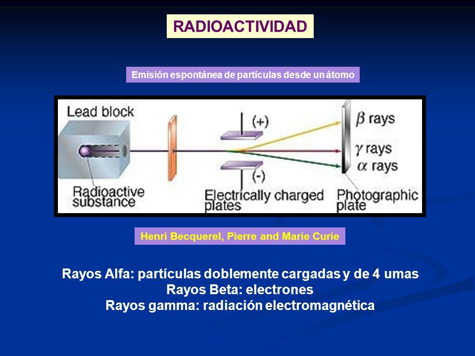 RADIOACTIVIDAD Rayos Alfa: partículas doblemente cargadas y de 4 umas