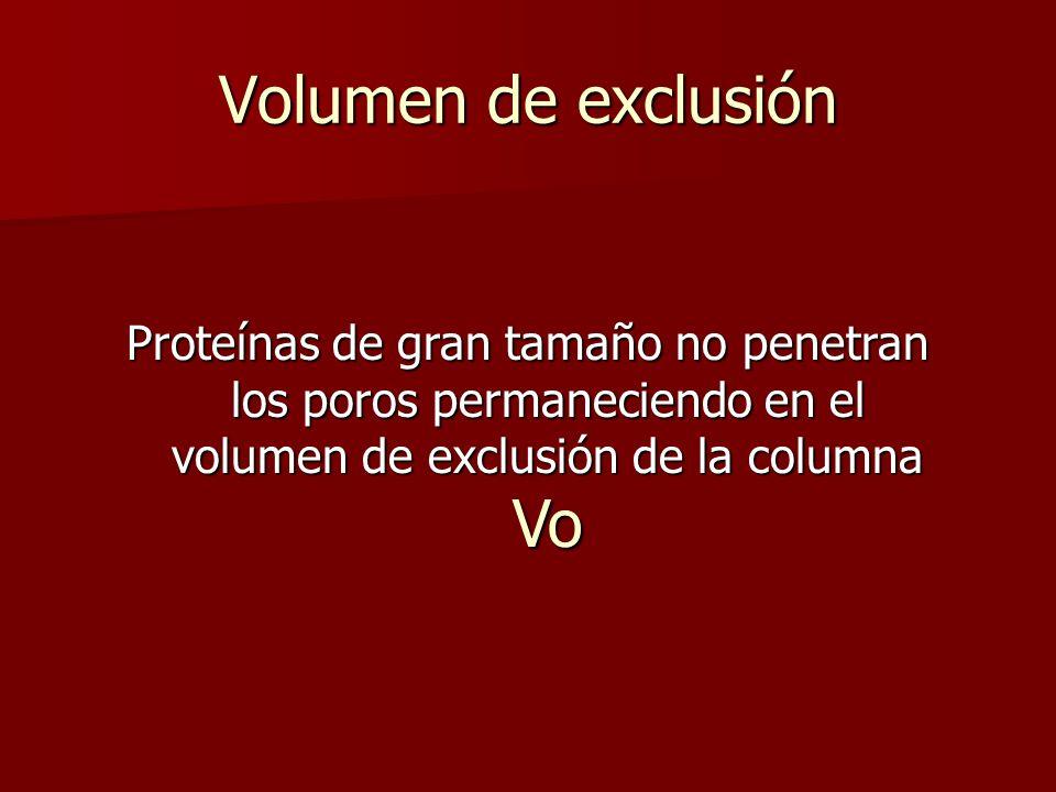 Volumen de exclusión Proteínas de gran tamaño no penetran los poros permaneciendo en el volumen de exclusión de la columna Vo.