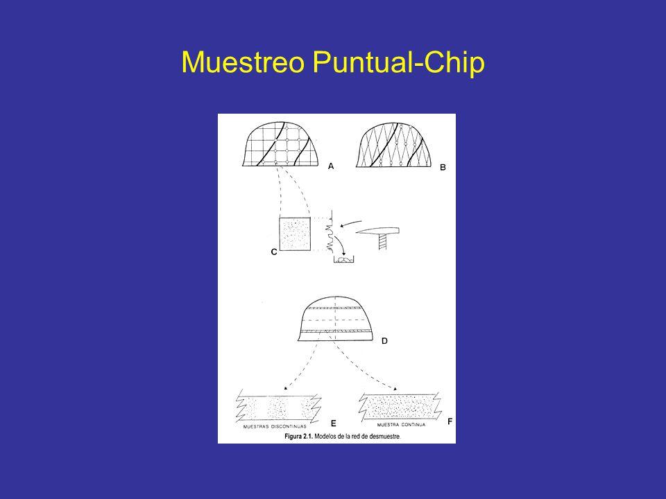 Muestreo Puntual-Chip