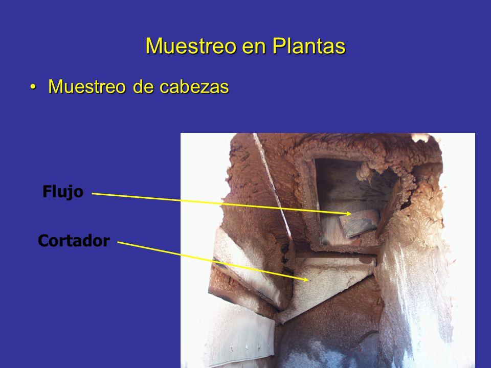 Muestreo en Plantas Muestreo de cabezas Flujo Cortador