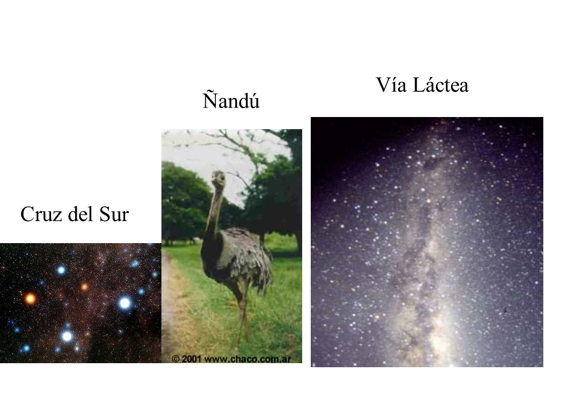 Vía Láctea Ñandú Cruz del Sur