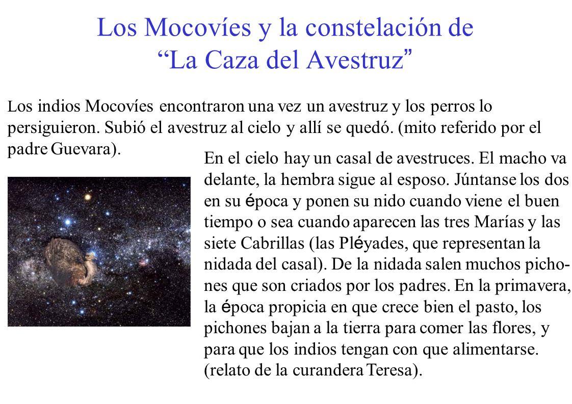 Los Mocovíes y la constelación de La Caza del Avestruz