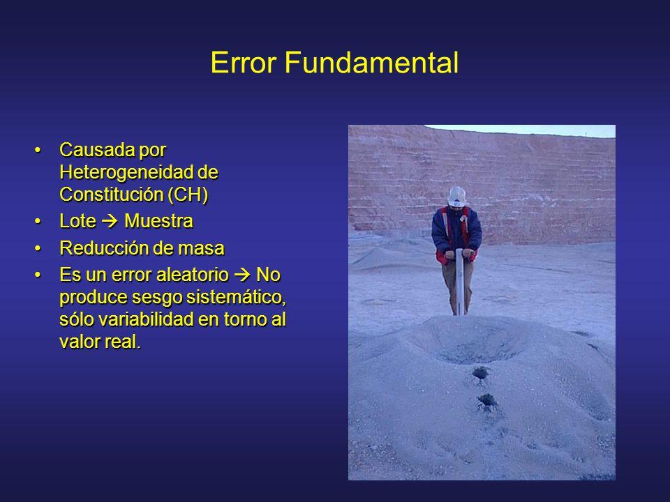 Error Fundamental Causada por Heterogeneidad de Constitución (CH)