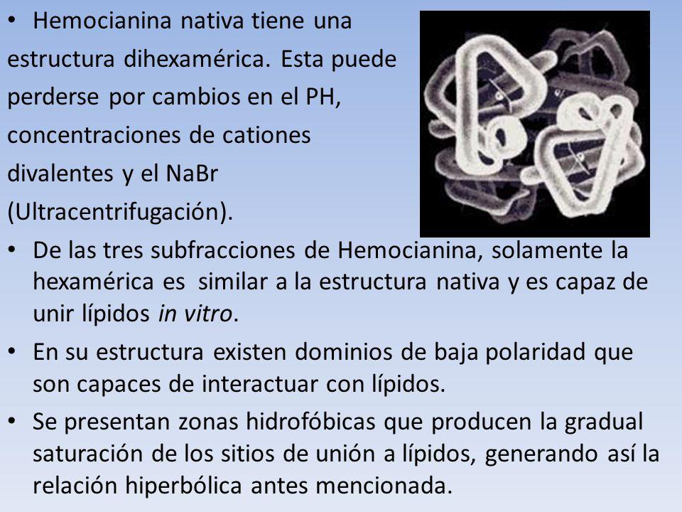 Hemocianina nativa tiene una