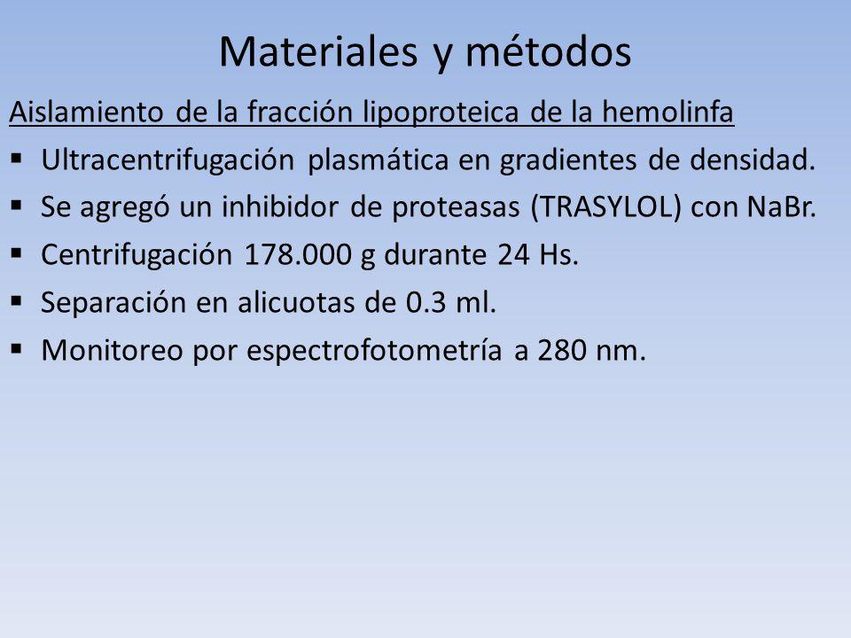 Materiales y métodos Aislamiento de la fracción lipoproteica de la hemolinfa. Ultracentrifugación plasmática en gradientes de densidad.