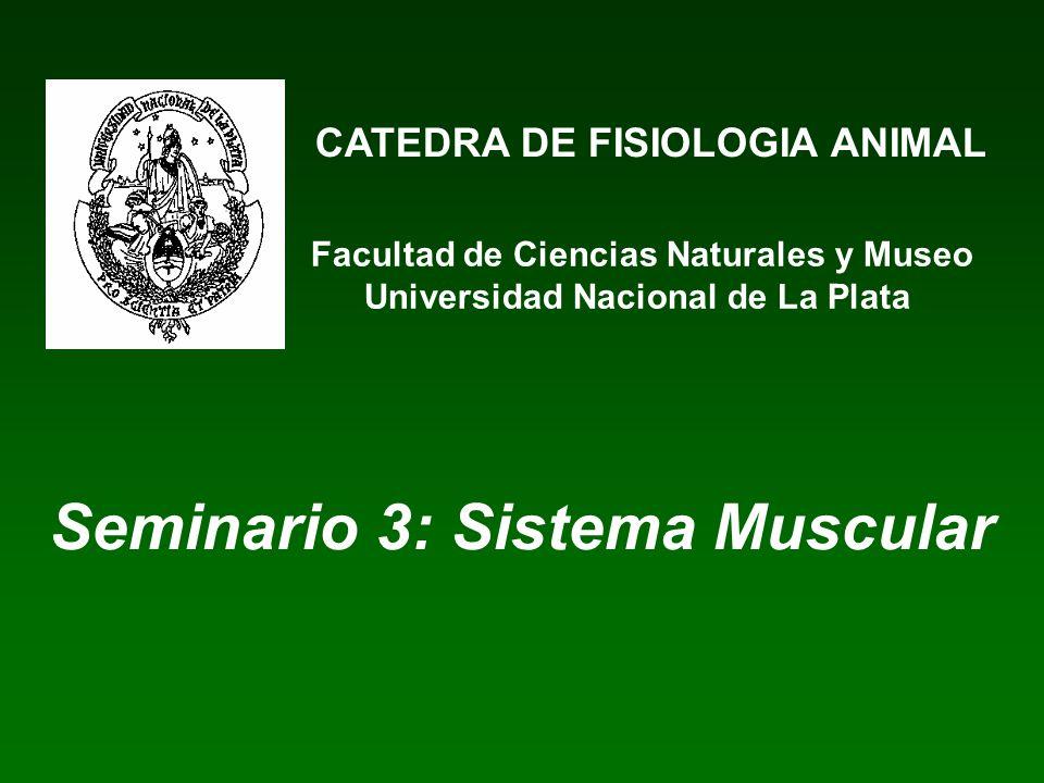 Seminario 3: Sistema Muscular