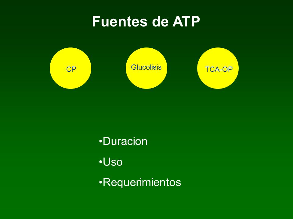 Fuentes de ATP Glucolisis CP TCA-OP Duracion Uso Requerimientos