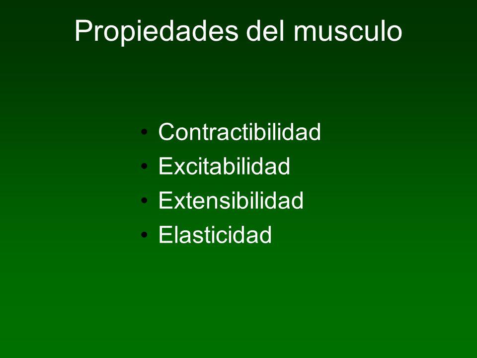 Propiedades del musculo