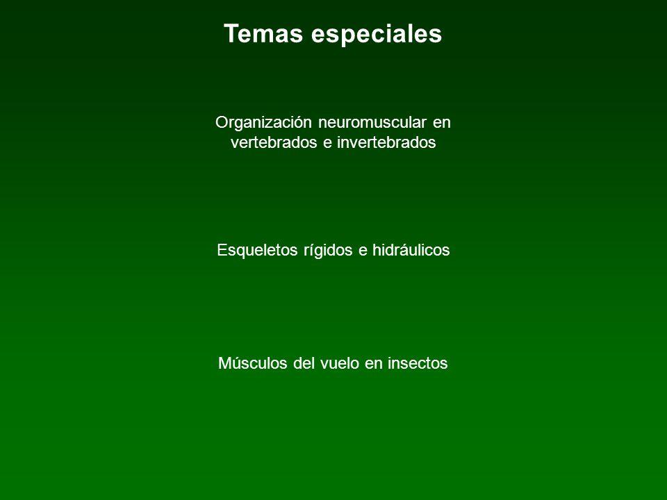 Temas especiales Organización neuromuscular en vertebrados e invertebrados. Esqueletos rígidos e hidráulicos.