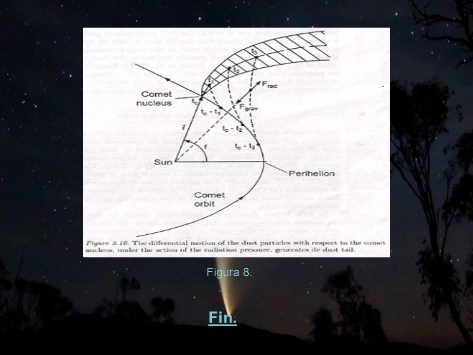 Figura 8. Fin.