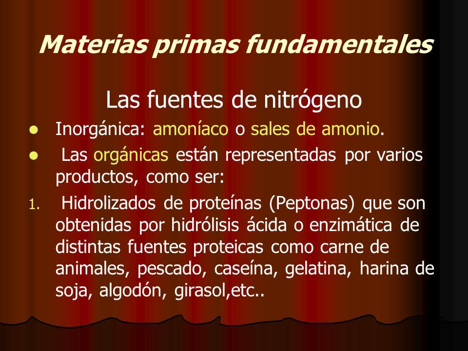 Materias primas fundamentales