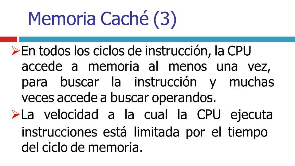 En todos los ciclos de instrucción, la CPU