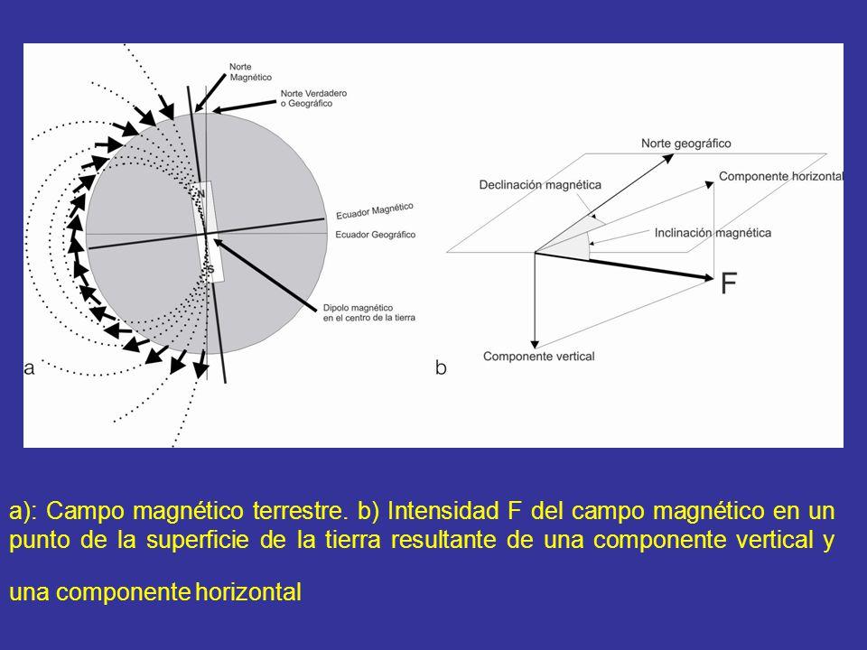 a): Campo magnético terrestre