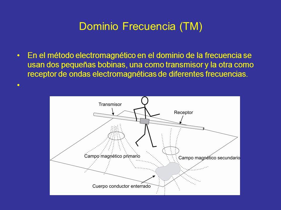 Dominio Frecuencia (TM)