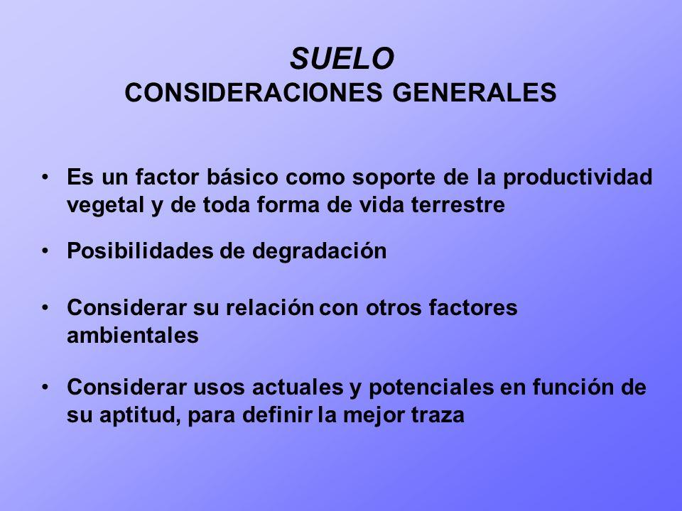 SUELO CONSIDERACIONES GENERALES