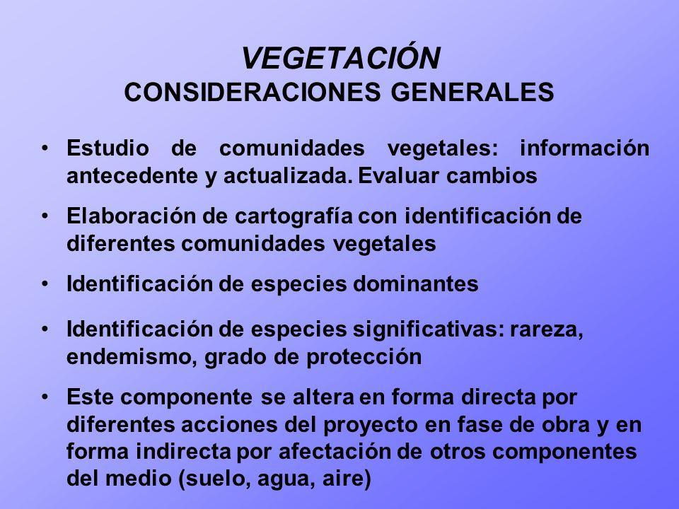 VEGETACIÓN CONSIDERACIONES GENERALES