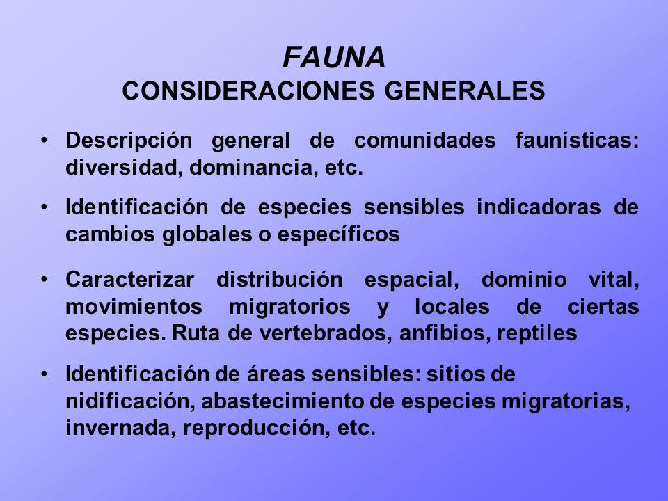 FAUNA CONSIDERACIONES GENERALES