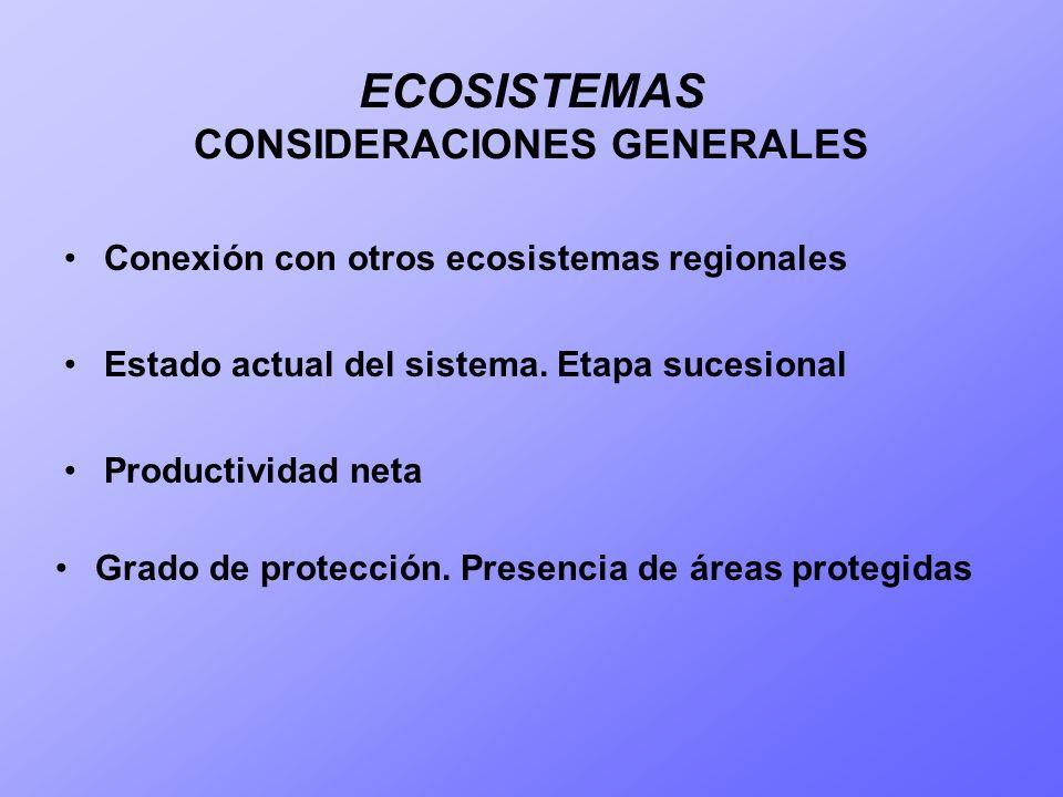 ECOSISTEMAS CONSIDERACIONES GENERALES