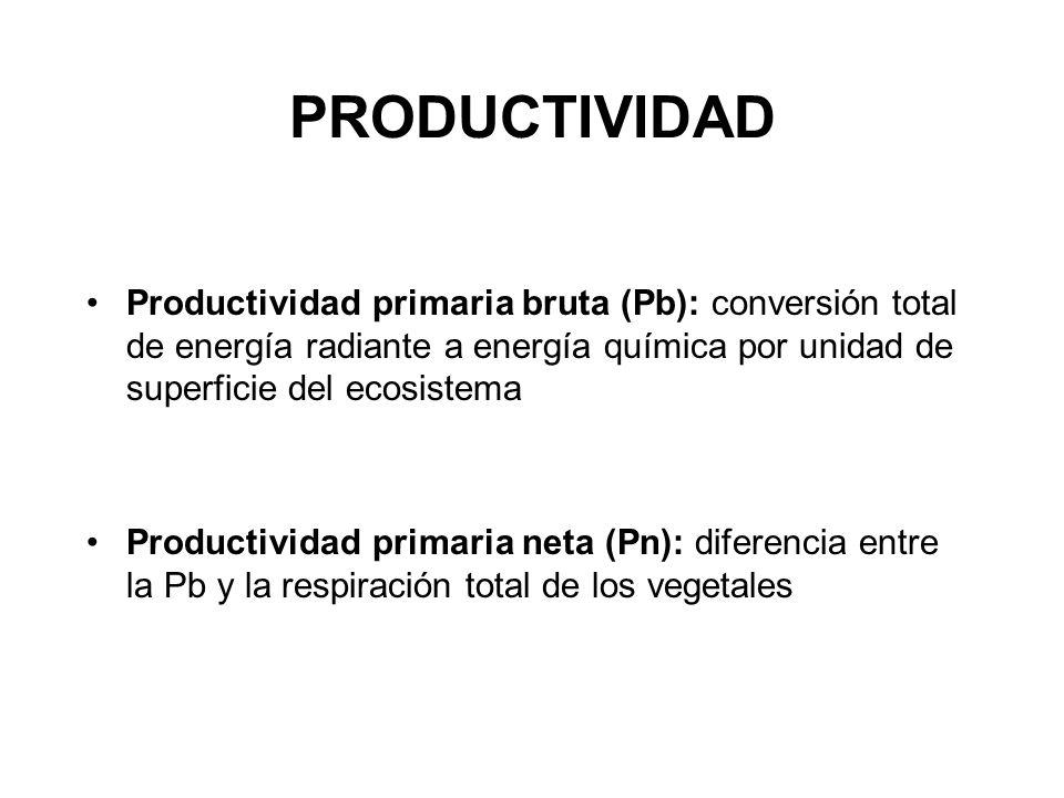 PRODUCTIVIDAD Productividad primaria bruta (Pb): conversión total de energía radiante a energía química por unidad de superficie del ecosistema.