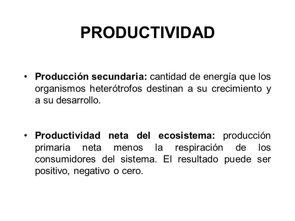 PRODUCTIVIDAD Producción secundaria: cantidad de energía que los organismos heterótrofos destinan a su crecimiento y a su desarrollo.
