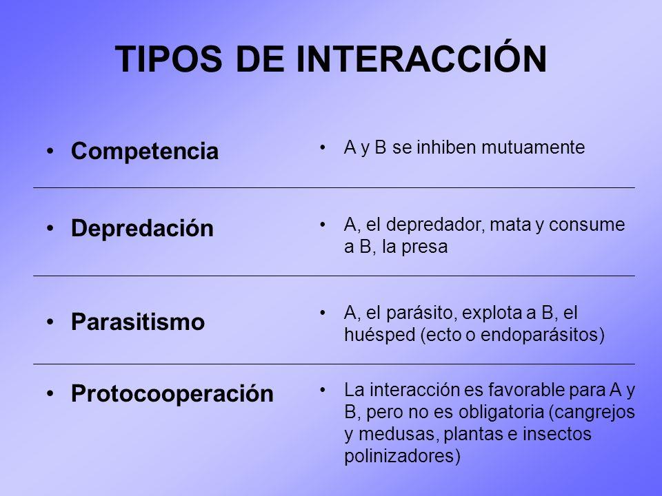 TIPOS DE INTERACCIÓN Competencia Depredación Parasitismo
