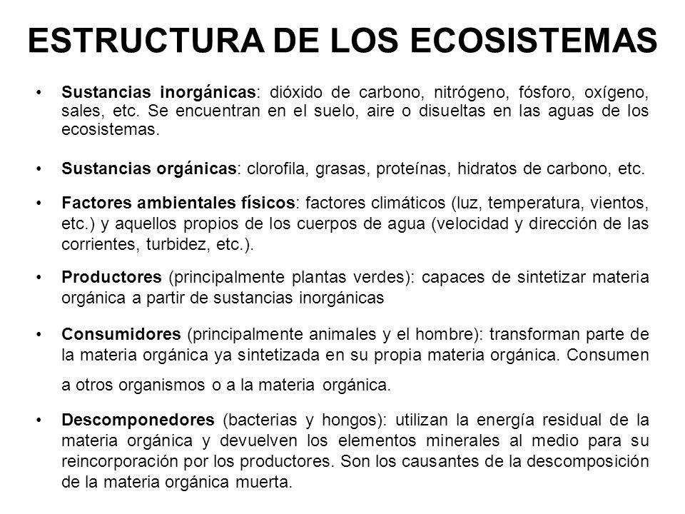 ESTRUCTURA DE LOS ECOSISTEMAS