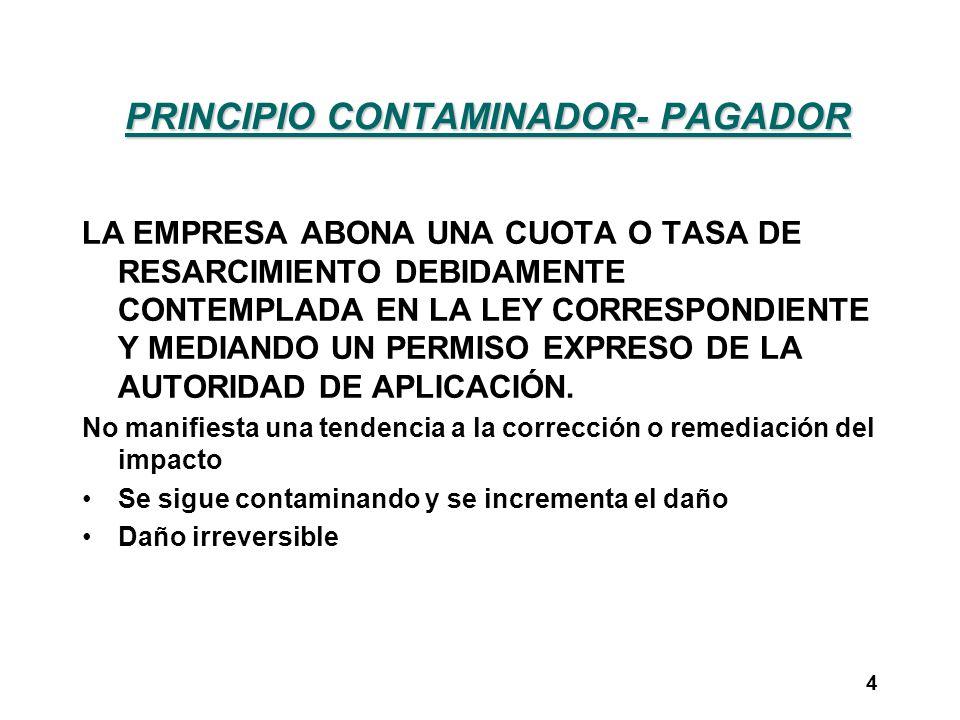 PRINCIPIO CONTAMINADOR- PAGADOR