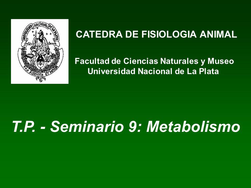 T.P. - Seminario 9: Metabolismo
