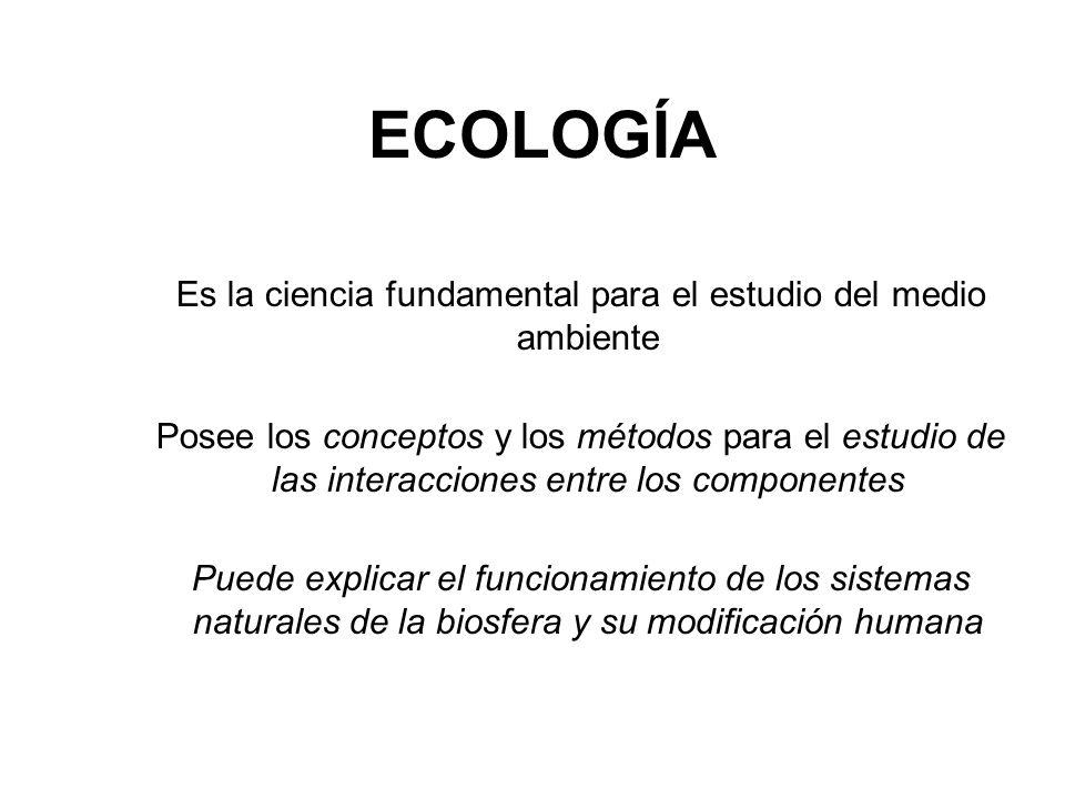 Es la ciencia fundamental para el estudio del medio ambiente