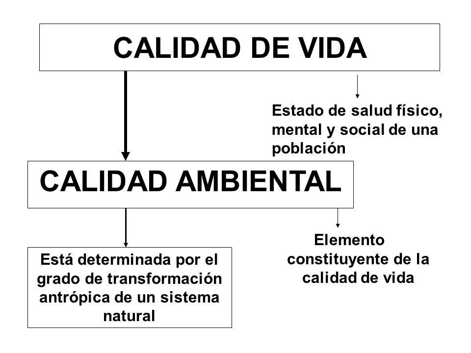 Elemento constituyente de la calidad de vida