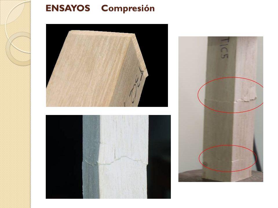 ENSAYOS Compresión