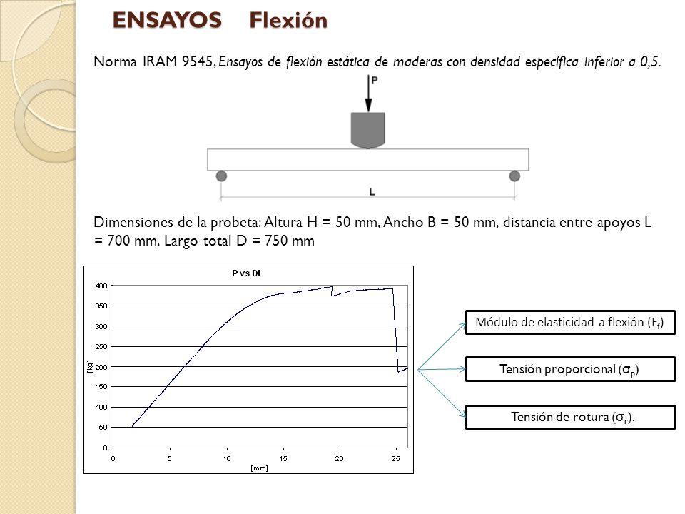 ENSAYOS Flexión