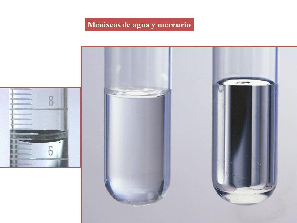 Meniscos de agua y mercurio