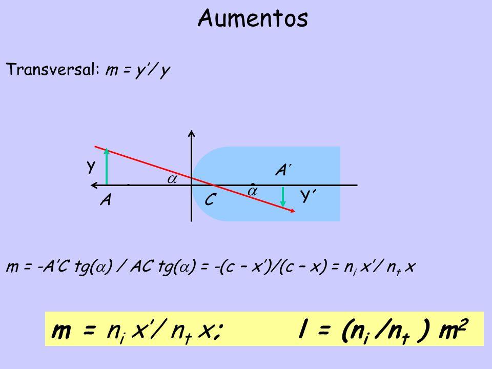 m = ni x'/ nt x; l = (ni /nt ) m2