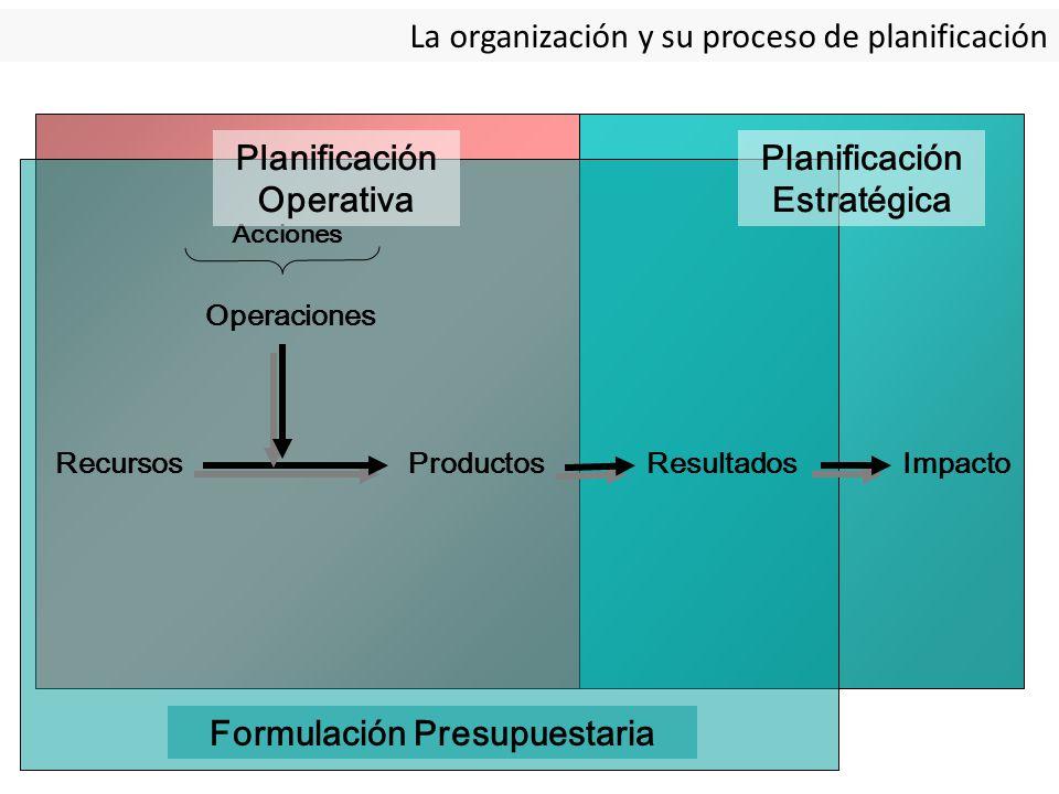 La organización y su proceso de planificación