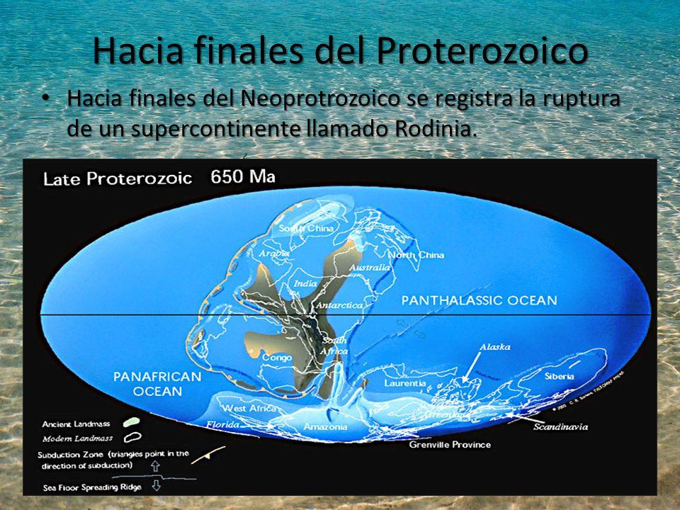 Hacia finales del Proterozoico