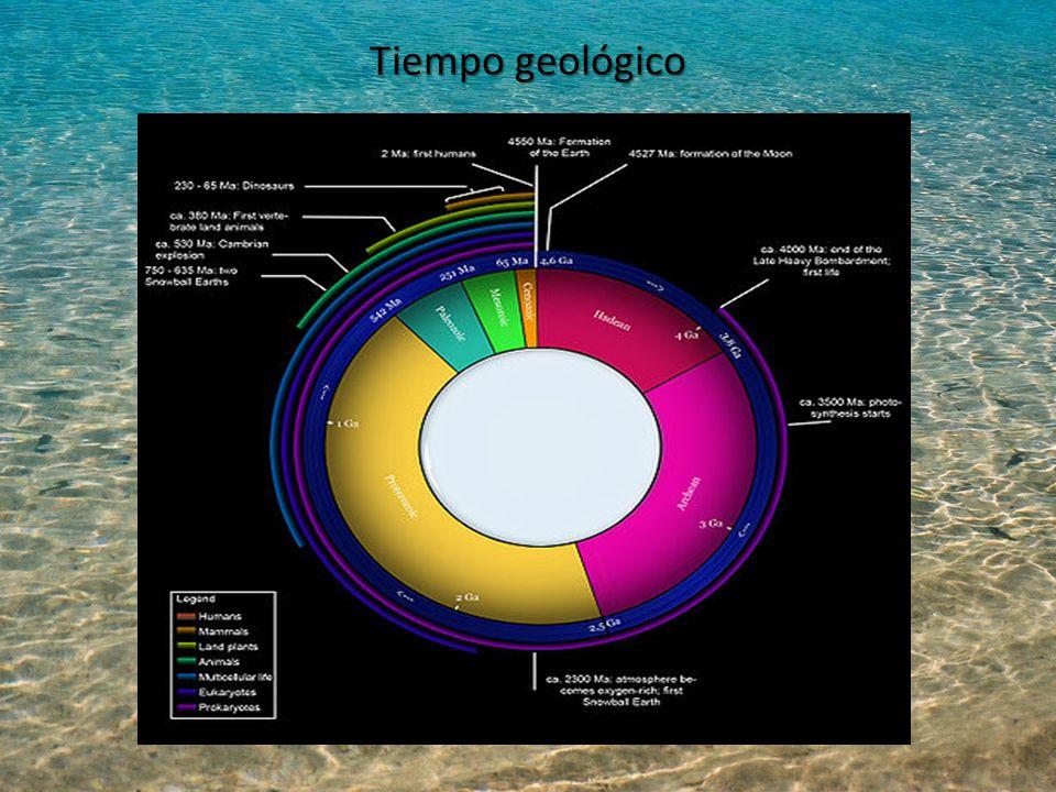 Tiempo geológico