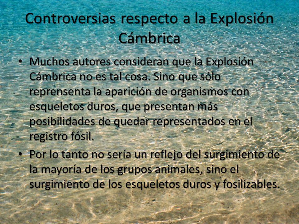 Controversias respecto a la Explosión Cámbrica