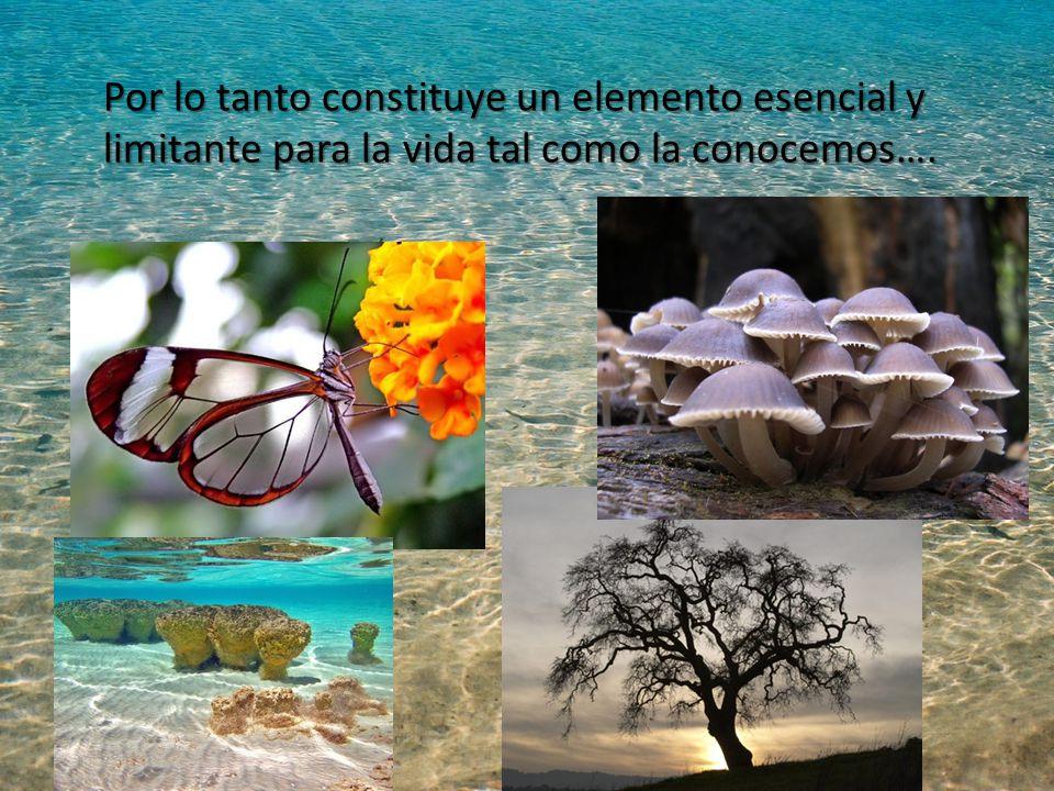 Por lo tanto constituye un elemento esencial y limitante para la vida tal como la conocemos….