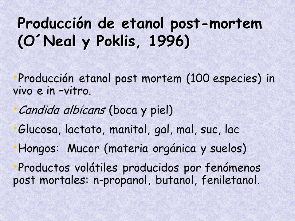 Producción de etanol post-mortem (O´Neal y Poklis, 1996)