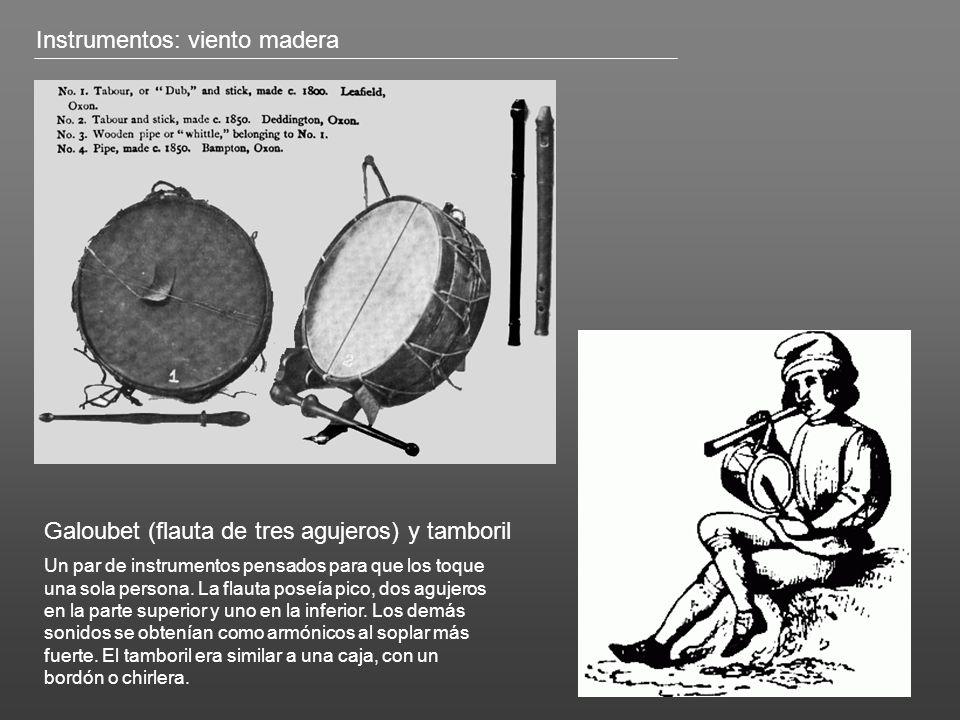 Instrumentos: viento madera