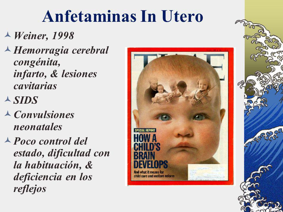 Anfetaminas In Utero Weiner, 1998